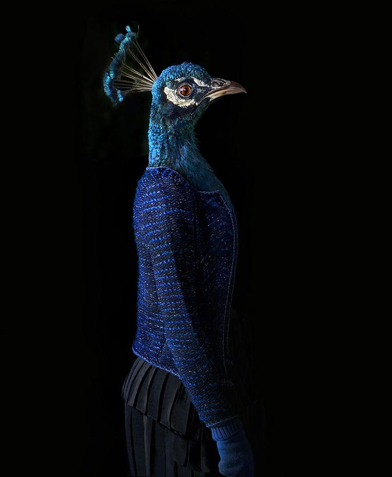 Photo de mode animalière par Miguel Vallinas