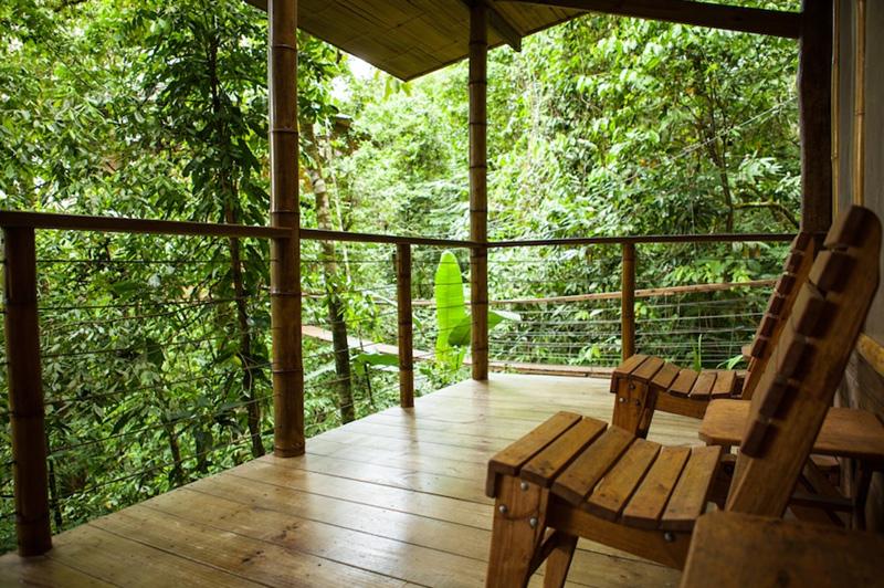 résidence cabane dans les arbres