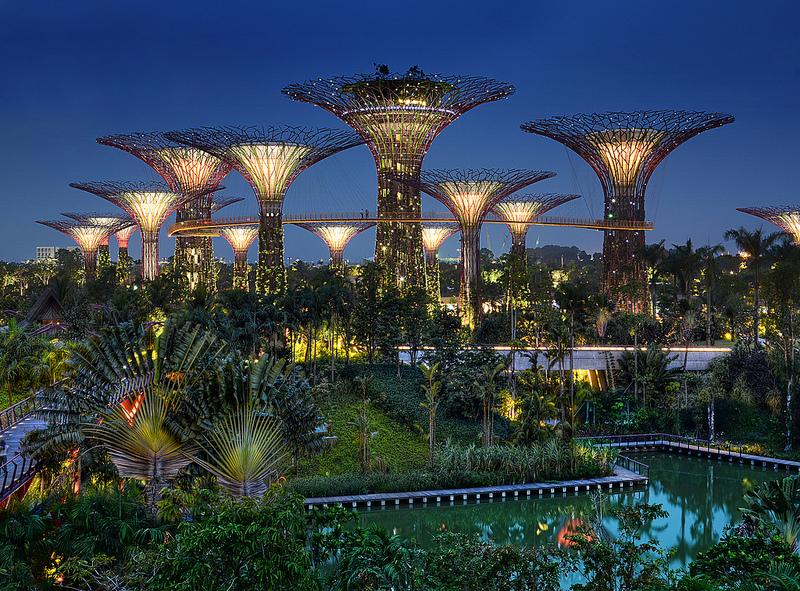 arbres artificiels de singapour