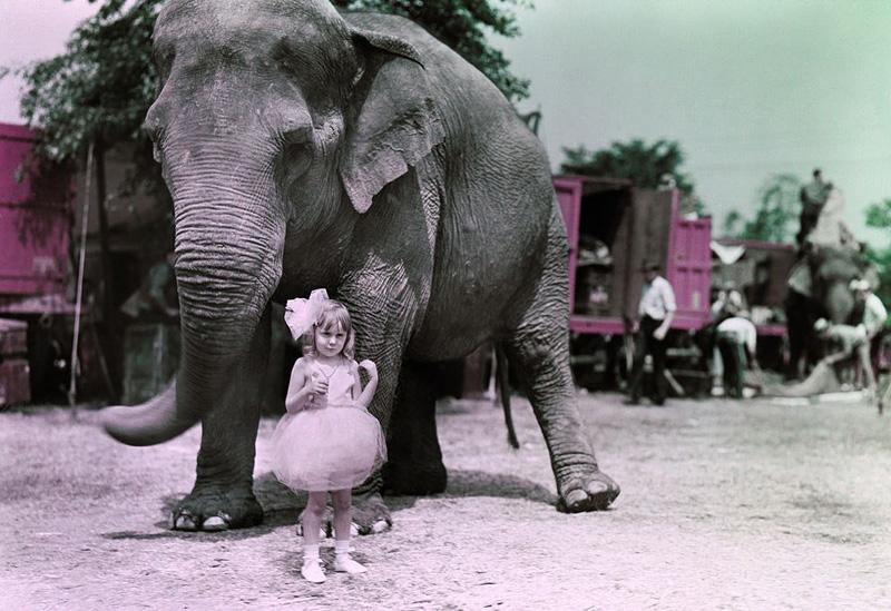 photo cirque ancien