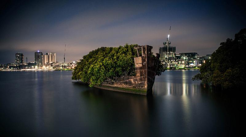 Vieux bateau abandonné transformé en forêt flottante