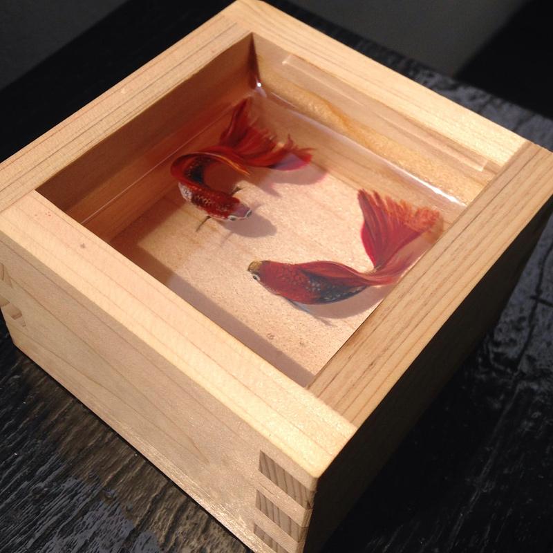 peinture et sculpture réaliste de poissons