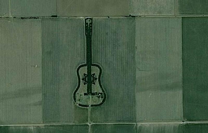 plantation d'arbres en forme de guitare