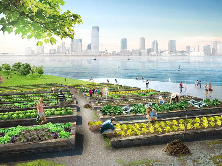 concept d'îlots pour New York