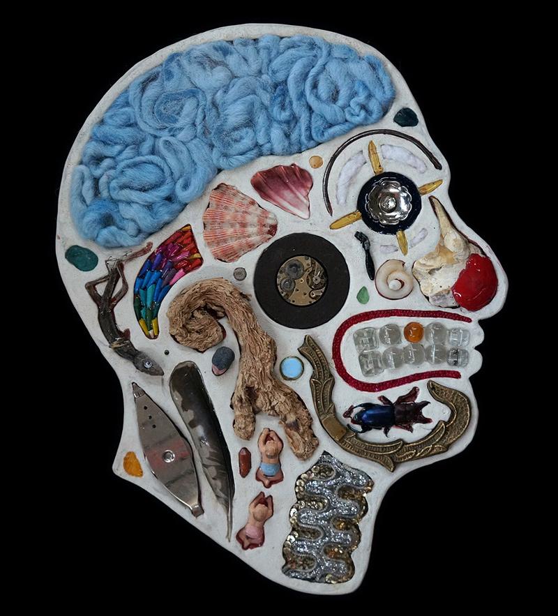 coupes anatomiques de têtes avec des objets hétéroclites