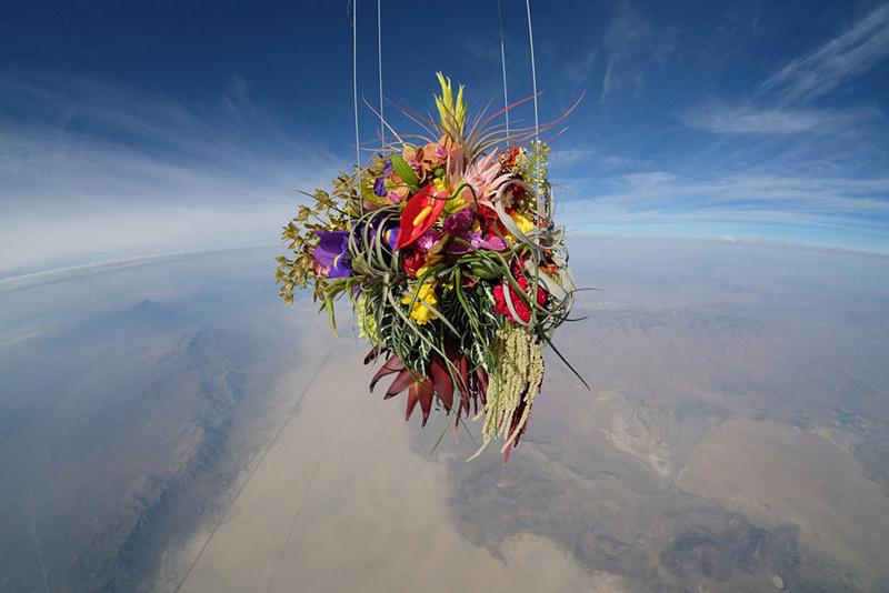 Des fleurs dans la stratosphère par Makoto Azuma