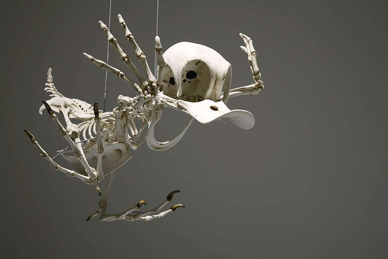 Squelettes de personnages de dessins animés célèbres
