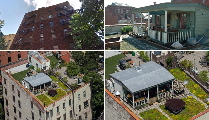 Une cabane bucolique sur un toit à Manhattan
