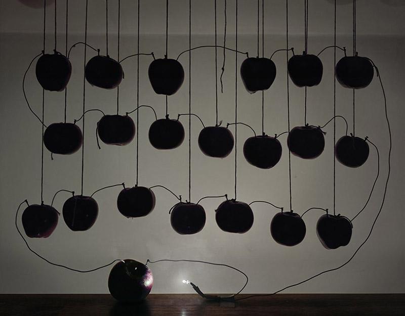 Utilisation de batteries électriques à base de fruits pour éclairer des photographies à longue exposition