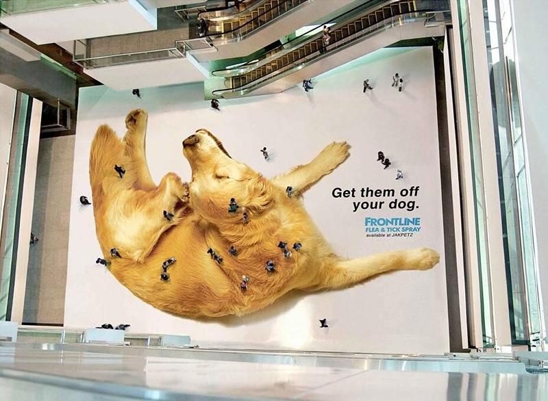 Publicités surprenantes