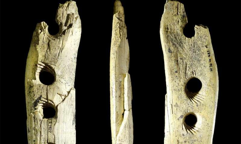 Outil à fabriquer de la corde, en ivoire de mammouth, trouvé dans la grotte de Hohle Fels