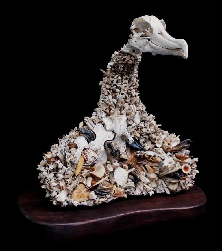 buste d'animal avec des os