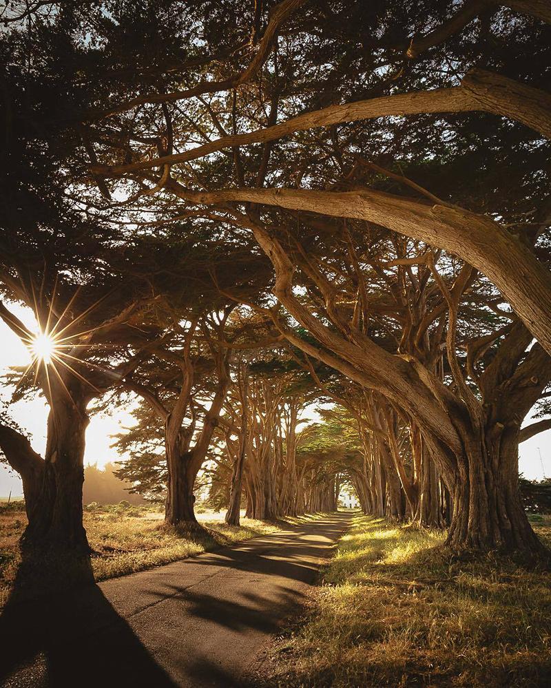 comté de Marin en Californie