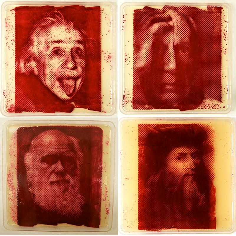 Zachary Copfer, portraits avec microbes