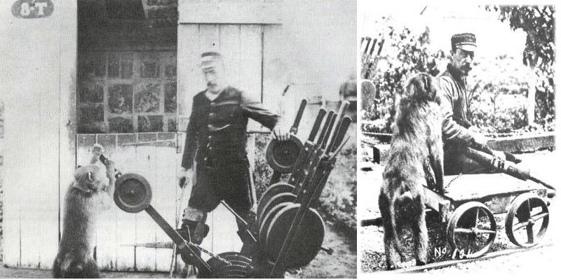 Jack le babouin, aiguilleur de chemin de fer