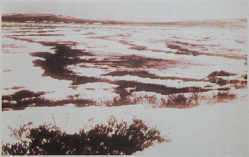 Événement de la Toungouska